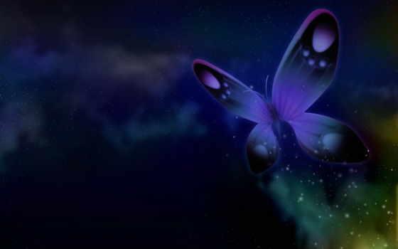бабочки, дневник, полет,