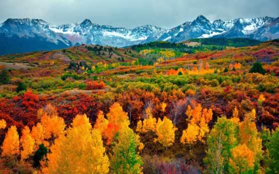 осенью, осень, природа, красавица,
