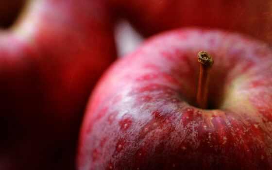 coffee, leaf, apple, home, плод, бутерброд, buah