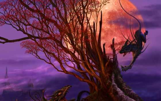 uchio, kazumasa, art, драконов, masa, себя,