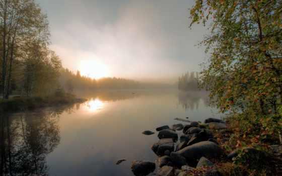 природа, коллекциях, friozul, яndex, осень, mgła, дымка, las,