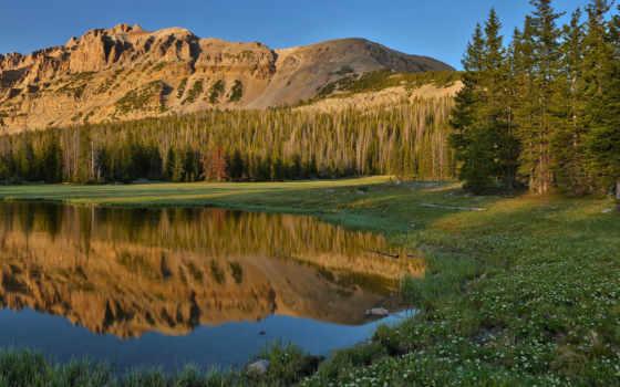 природа, горы, лес, озеро, cvety, трава, небо, отражения,