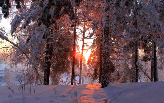 zima, снег, priroda