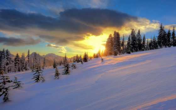 winter, снег, sun, закат, trees, desktop, highlights, дерево, природа, landscapes,