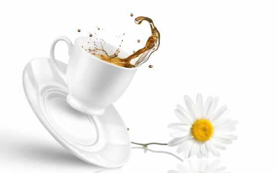 чая, утра, images, утречка, добренького, купить, монастырский, chau, доброго, photos,