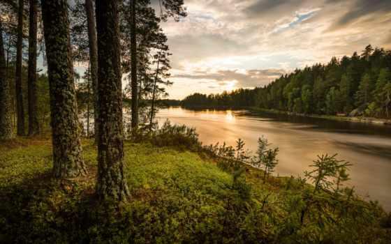 природа, река, лес, rzeka, tapety, группа,