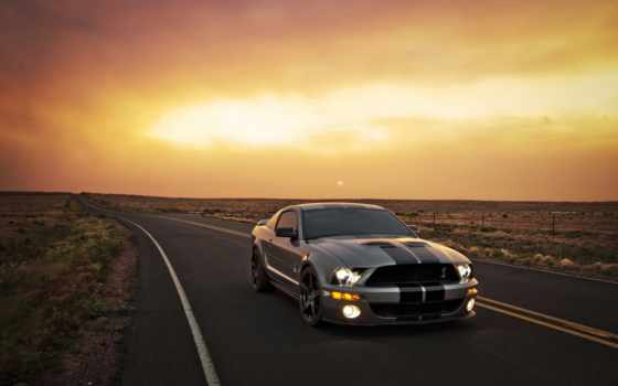 ford, mustang, shelby, машины, https,