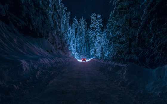 ночь, снег, winter, лес, дорога, кюстендил, болгария, свет, природа,