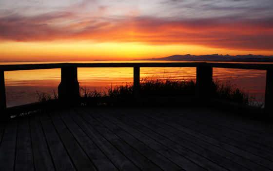 закат, free, backyard, природа, home,