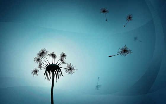 одуванчик, мечты, цветы, одуванчики, разлетевшиеся, природа,