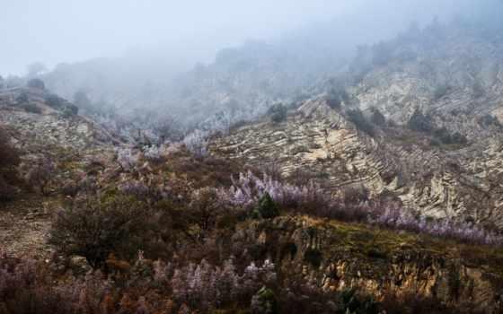 дагестан, кавказ, природа, горы, russian, дмитрий, chistoprudov, дагестана,