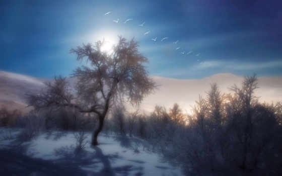 winter, снег, definition