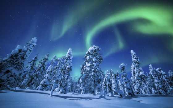 winter, природа, снег, сияние, картинка, небо, красиво, красивые, северное, лес,