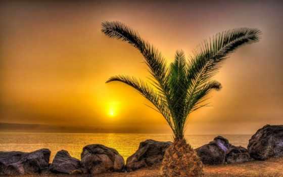 have, photos, our, you, природа, день, best, ночь,