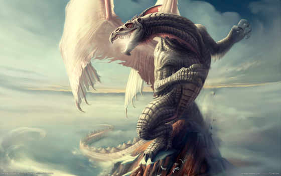 dragon, neverwinter