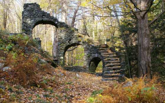природа, природы, красавица Фон № 135349 разрешение 1920x1080