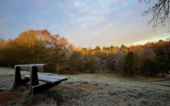природа, following, осень