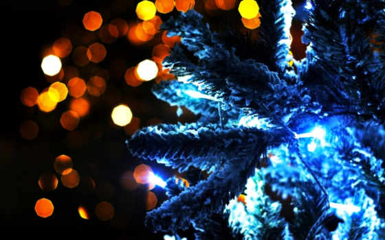 new, год, праздник, гирлянды, елка, ёль, огни, магия, картинка,