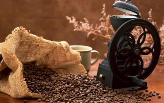 coffee, cup, напитки, картинка, еда, телефон, зерна,