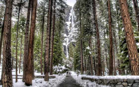 winter, лес, природа, фоны, красивые, снег, водопад,