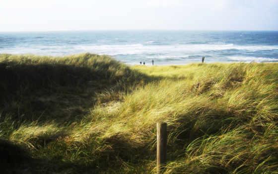 пляж, трава, море, free, desktop, beaches, ветер, like,