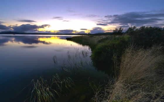 берег, трава