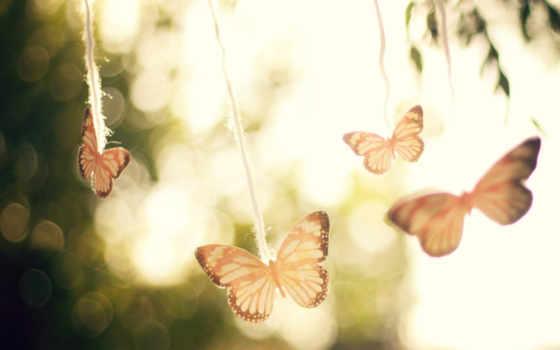 бабочки, небо, свет, air, ветер, trees, руки, блики, настроение, широкоформатные,