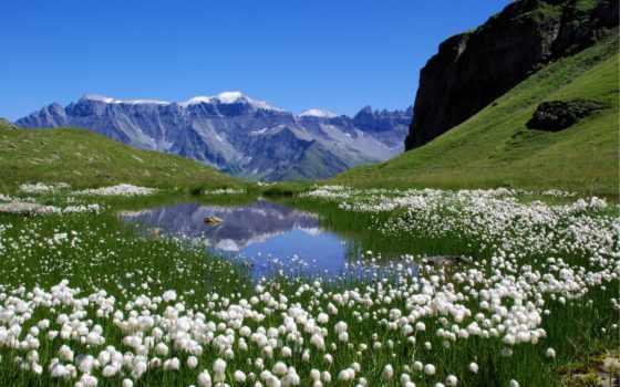 альпы, swiss, швейцарские, горы, швейцарии,