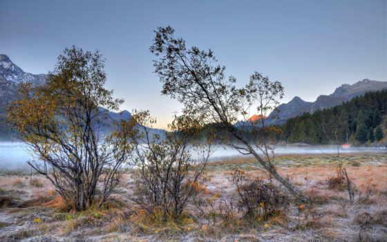 природа, гора, тег, туман, картинка, pine, планшетный, река