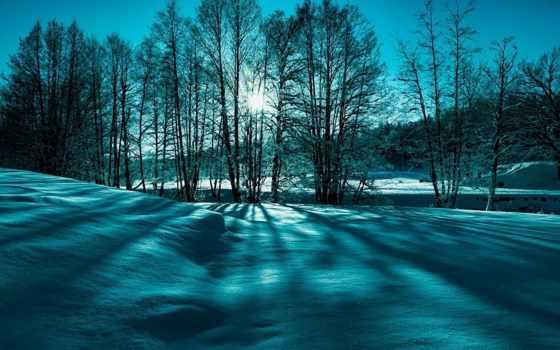поле, снег, winter, популярные, english, самые, стандартные, reply, освещает, солнца, холод,