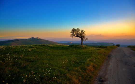 summer, widescreen, landscape, mac, поле, дорога, free,
