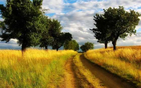 country, дорога, natura, armonia, full, della,