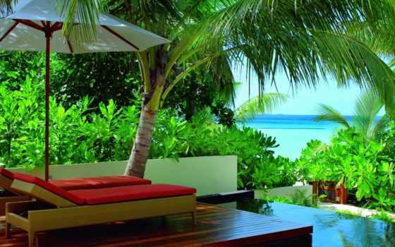 ocean, пальмы, maldives, пляж, preview, summer,