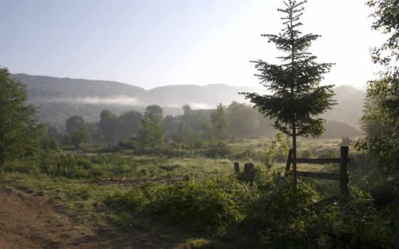 природа, туман Фон № 32155 разрешение 1920x1080