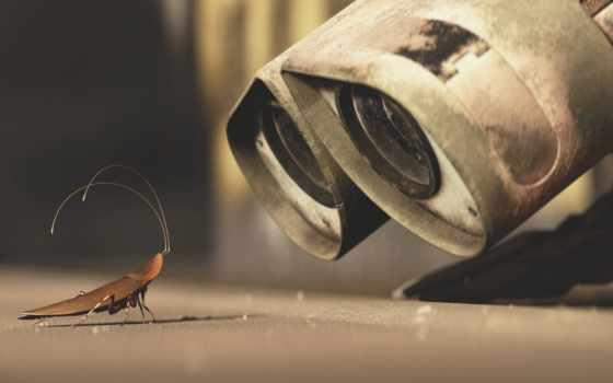 wall, робот, таракан