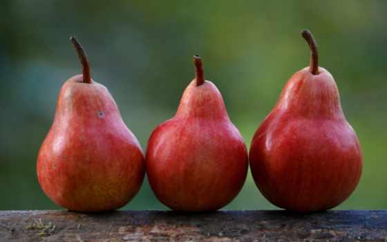 red, poire, сладкое, des, poires, плод, фрукты,