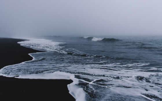 aesthetic, ocean, пляж, macbook, природа, цветы