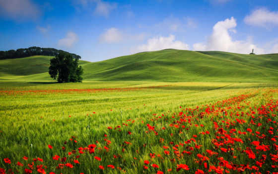 ecran, fonds, fond, paysage, природа, pin, pinterest, samsung,