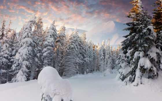 winter, снег, сосны, ёль, oblaka, горы, лес, крымский,