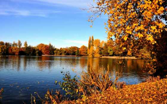 германия, gladbeck, german, природа, гладбек, reka, emsher, река,
