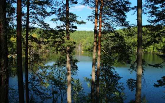 россия, озеро, изображение
