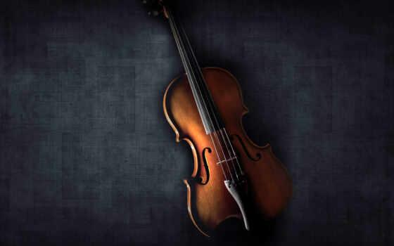 красивая скрипка