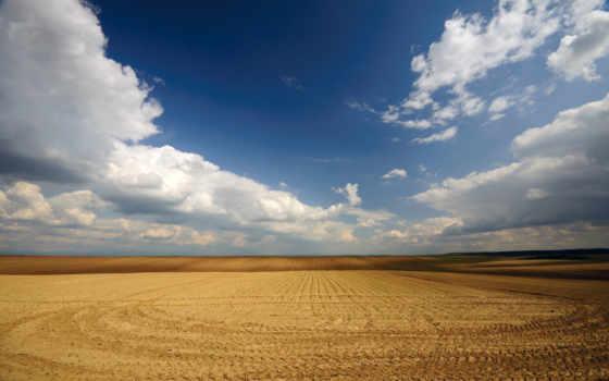 поле, пашня, сельское, ферма, со, линии, ряды,