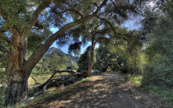 природа, hdr, калифорния