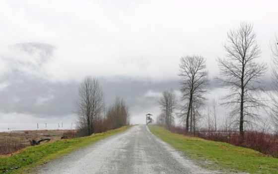 landscapes, природа, деревня, дорога, trees, roads, alfa, romeo, сельская,