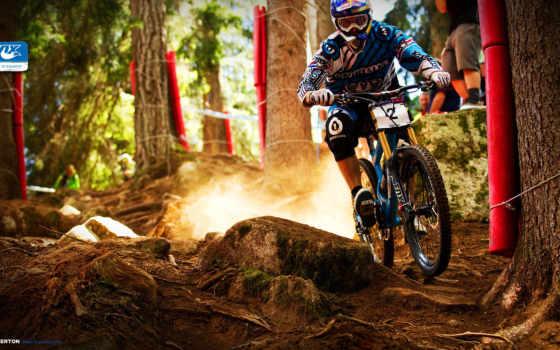 спорт, bike, browse