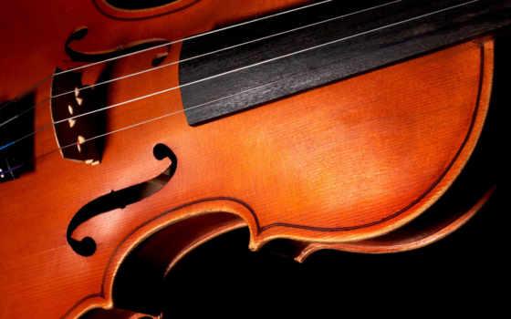 скрипка, black, фон, strings, free, макро, музыка,