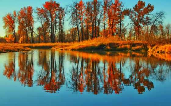 отражение, люди, природа, озеро, картинка, evaluating, trees,