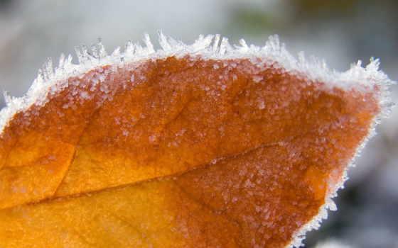 iarna, позе, imagini, peisaje, toamna, artistice, зи, meteo,