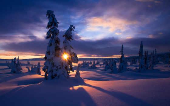 winter, sun, снег, природа, елки, горы, красивые, иней, широкоформатные,